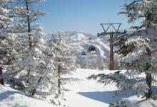 Ski Resort Shiga Kogen in Japan