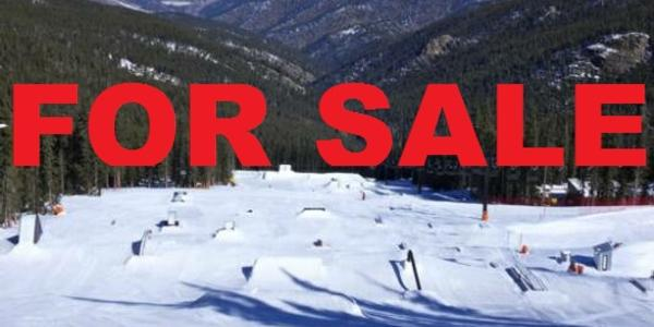 Buy a ski resort!