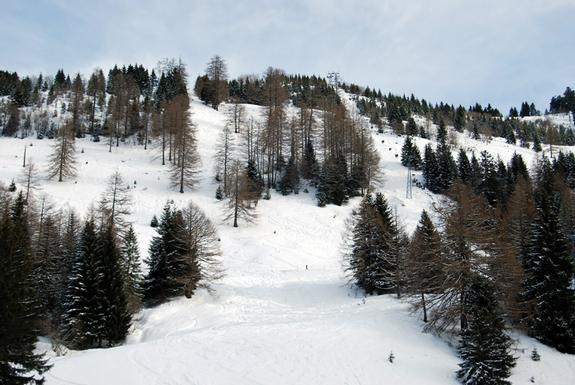 Torgon slopes
