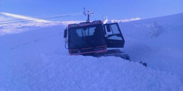 Nevis to open at the weekend