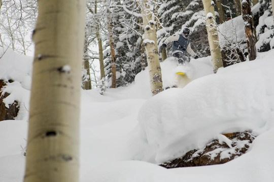 Aspen Pillows
