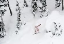 Record breaking snow at Whistler