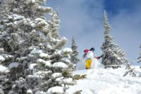 Ski Resort Whistler/Blackcomb in Canada