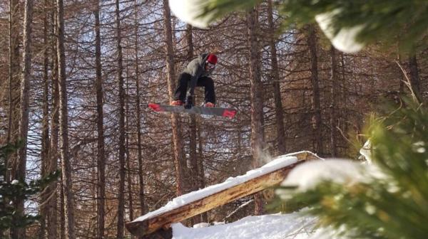 The Forest Snowboarder