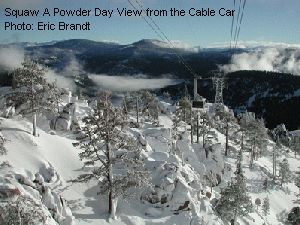 Squaw A Powder Day View from the Cable Car